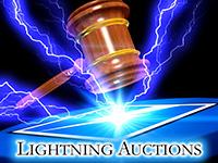 lightning auctions